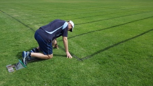 On Your Marks in Starting Blocks