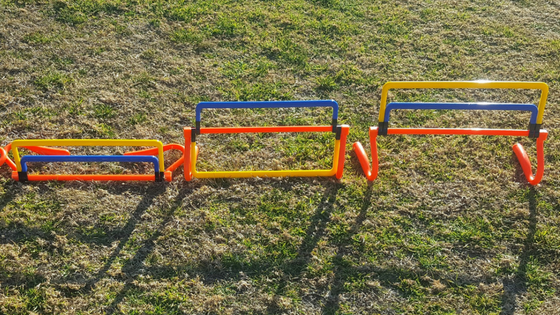 Mini Hurdle Sizes Blog