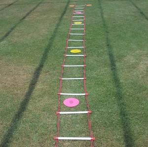 Ladder Dots