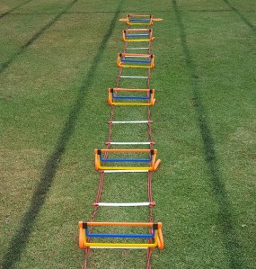 Ladder Hurdles