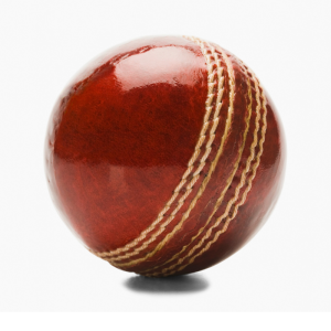 Cricket Ball Blog