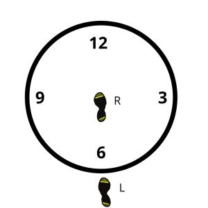 Discus Pivot 1
