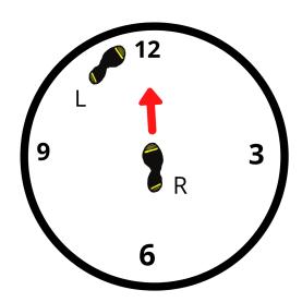 Discus Pivot Progression 1(2)